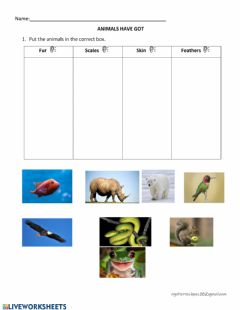 Interactive worksheet Animals covering