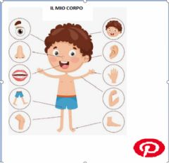 Interactive worksheet Il mio corpo