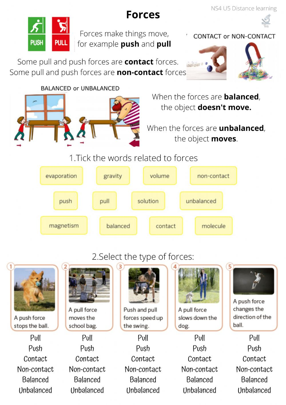 Types of forces interactive worksheet
