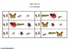Interactive worksheet Listen and choose the correct insect