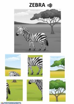 Interactive worksheet Zebra puzzle