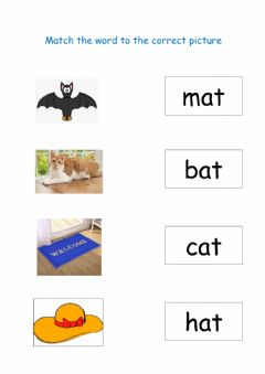 Interactive worksheet Match the picture to the word