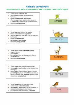 Ficha interactiva Animals vertebrats
