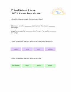 Interactive worksheet 6th Level Natural Science Unit 3