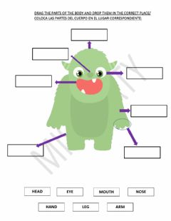 Interactive worksheet Body parts- monster