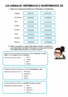 Interactive worksheet Animales vertebrados e invertebrados