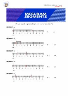 Interactive worksheet Mesuram segments