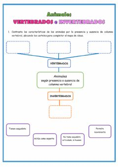 Interactive worksheet Mapa de ideas-Animales vertebrados e invertebrados