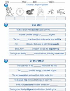 Interactive worksheet Swamp Life, Everglades, One Way or the Other