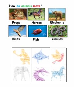Interactive worksheet How do animals move?
