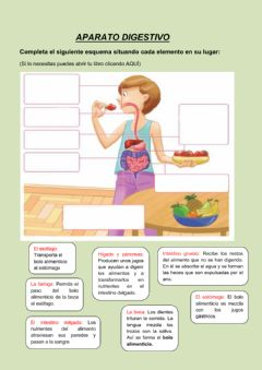 Interactive worksheet La nutrición