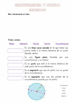 Interactive worksheet Cincunferencia y círculo