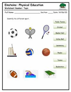 Interactive worksheet Identify the different sport