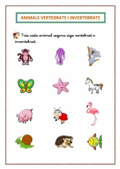 Interactive worksheet Animals VERTEBRATS i INVERTEBRATS