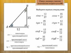 Interactive worksheet Синус, косинус, тангенс, котангенс 8