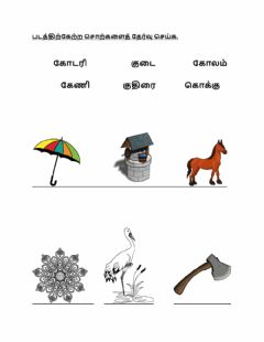 Interactive worksheet Tamil kavarisai kindergarten