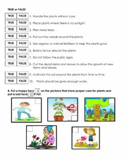 Interactive worksheet Caring for Plants