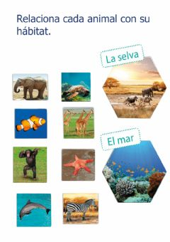 Interactive worksheet Relaciona selva i mar