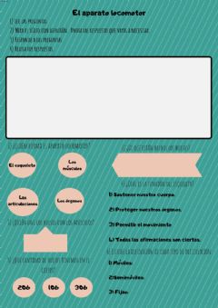 Interactive worksheet El aparato locomotor
