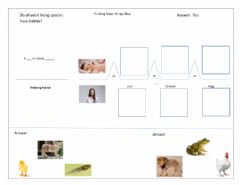 Interactive worksheet Bridge Map Living species and their babies