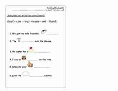 Interactive worksheet Look and writ