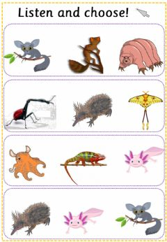 Interactive worksheet Listen and choose the animal