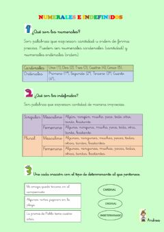 Interactive worksheet Ficha determinantes numerales e indefinidos