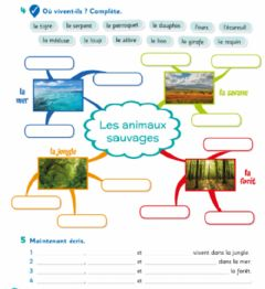 Interactive worksheet Les animaux sauvages