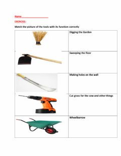 Interactive worksheet Environmental