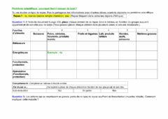 Interactive worksheet Equilibre alimentaire