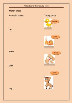 Interactive worksheet Animals and their young ones