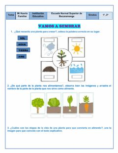 Interactive worksheet MI Huerta