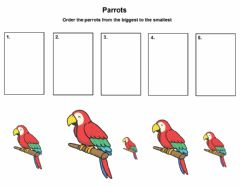 Interactive worksheet Comparing sizes
