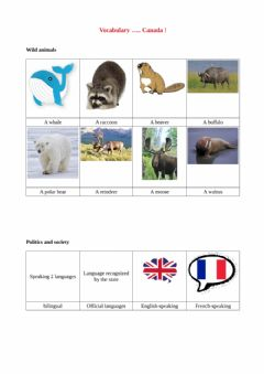 Interactive worksheet Learn vocabulary Canada part 1