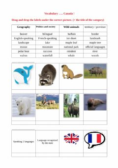 Interactive worksheet Drag and drop Canada Vocabulary 1