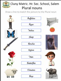 Interactive worksheet Plural nouns