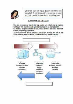 Interactive worksheet Cambios de estado del agua