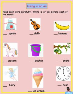 Interactive worksheet The Use of a and an