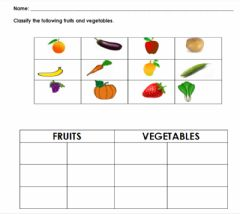 Interactive worksheet Classifying1