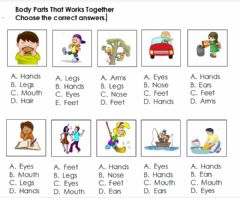Ficha interactiva Body Parts That Work Together