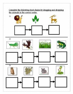 Interactive worksheet Food chain
