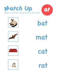 Interactive worksheet Word Family AT