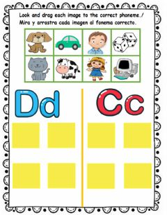 Interactive worksheet D or C