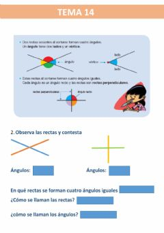 Interactive worksheet Rectas y angulos