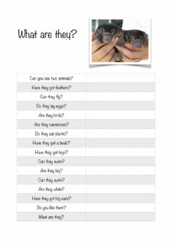 Interactive worksheet What is it?