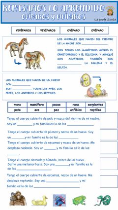 Interactive worksheet Animales ovíparos vivíparos