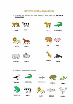 Interactive worksheet Repàs els animals