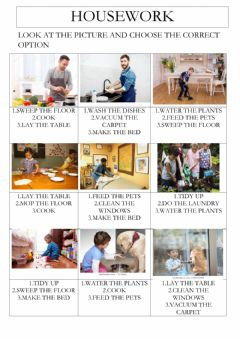 Interactive worksheet Housework