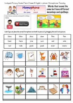 Ficha interactiva English Term 2 Week 8 :Grade 3 Thursday: 2020