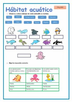 Interactive worksheet Animales acuáticos